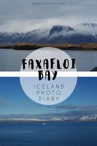Faxafloi Bay Travel Diary
