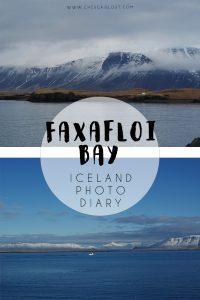 Faxafloi Bay Travel Diary