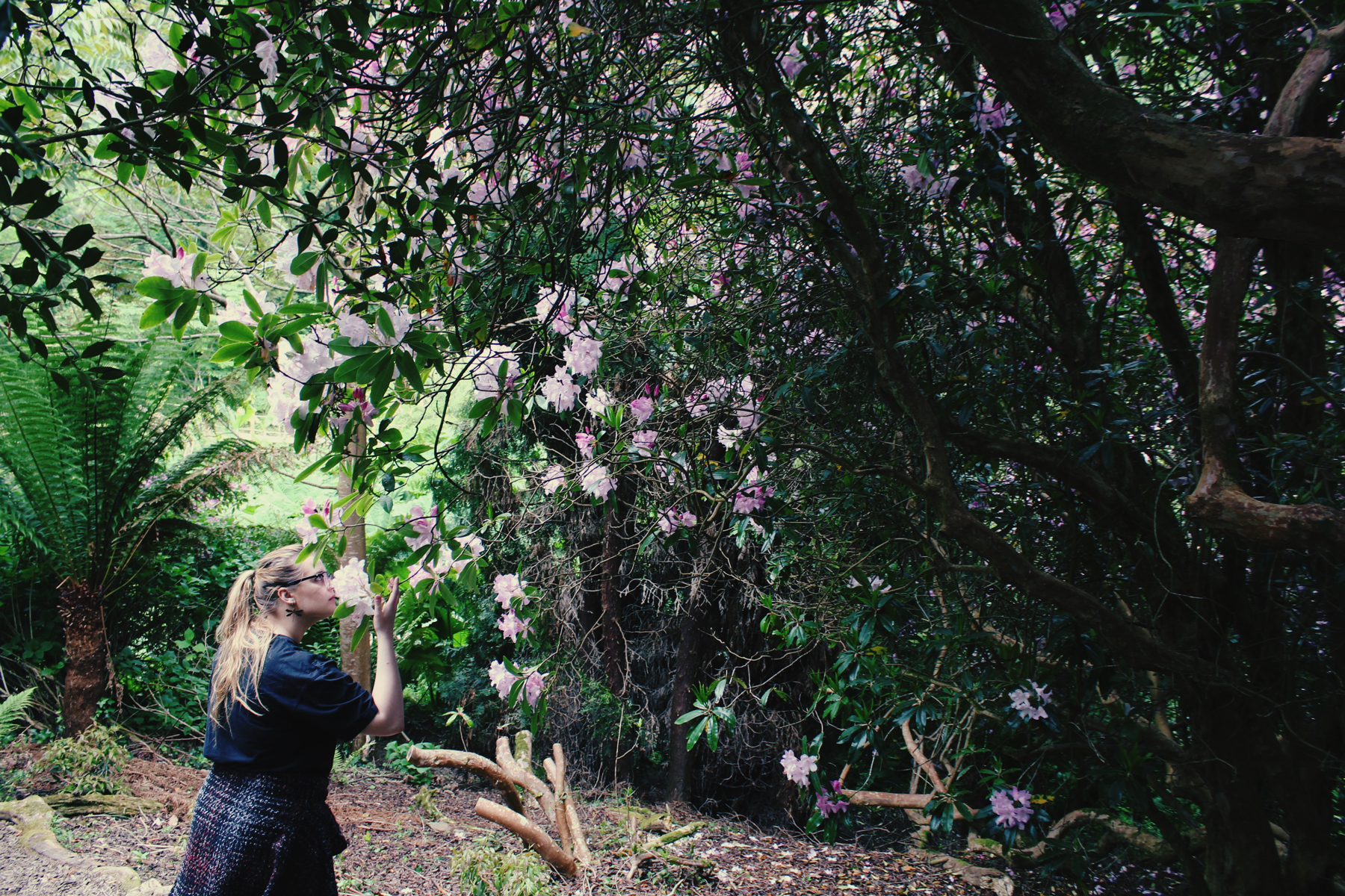 Kate smelling the Rhododendron bush, Cornwall