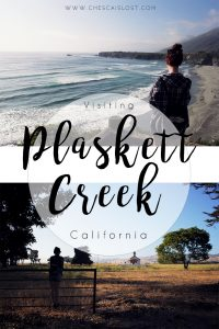 Road Trip to Plaskett Creek, California