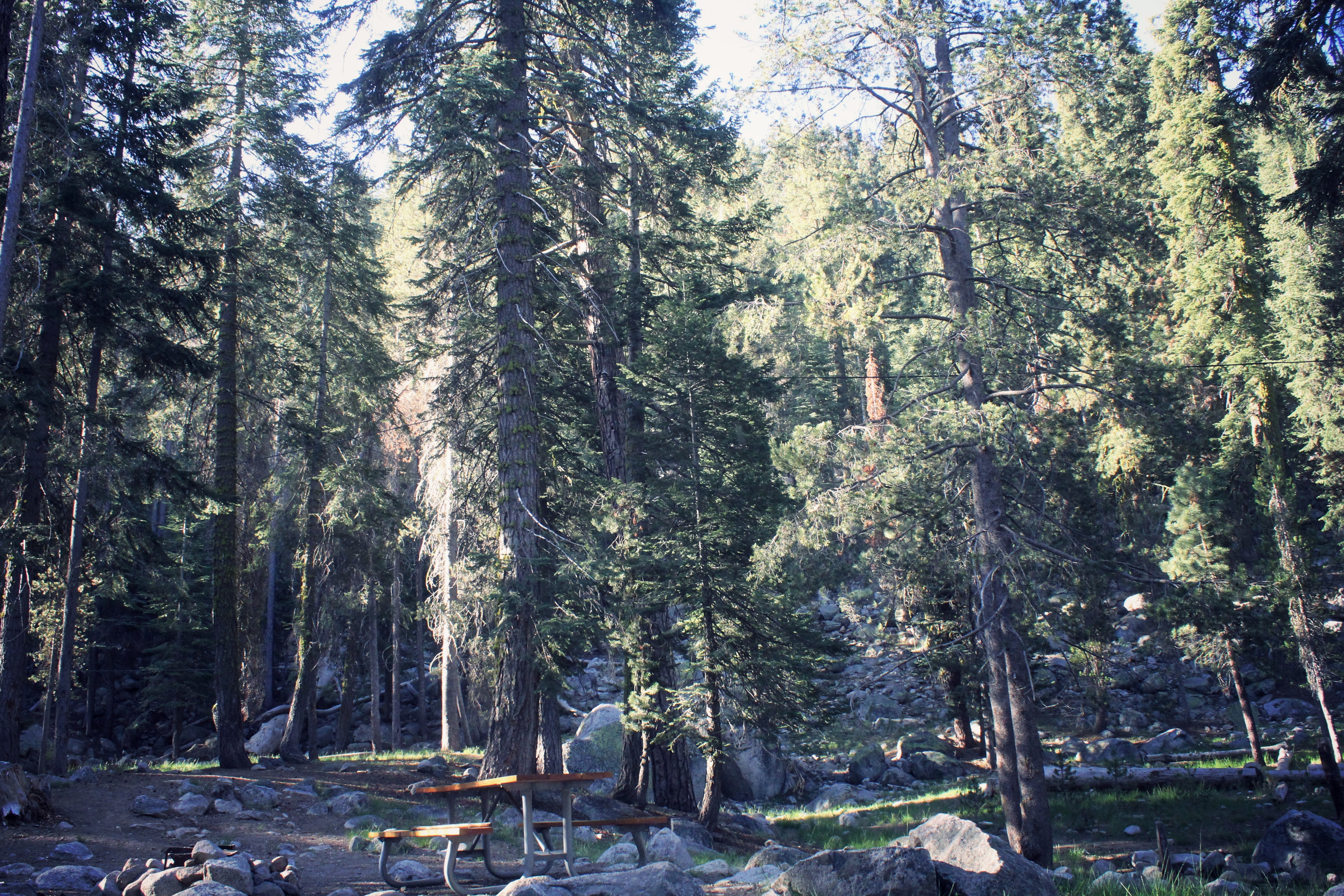 Campsite in Sequoia National Park