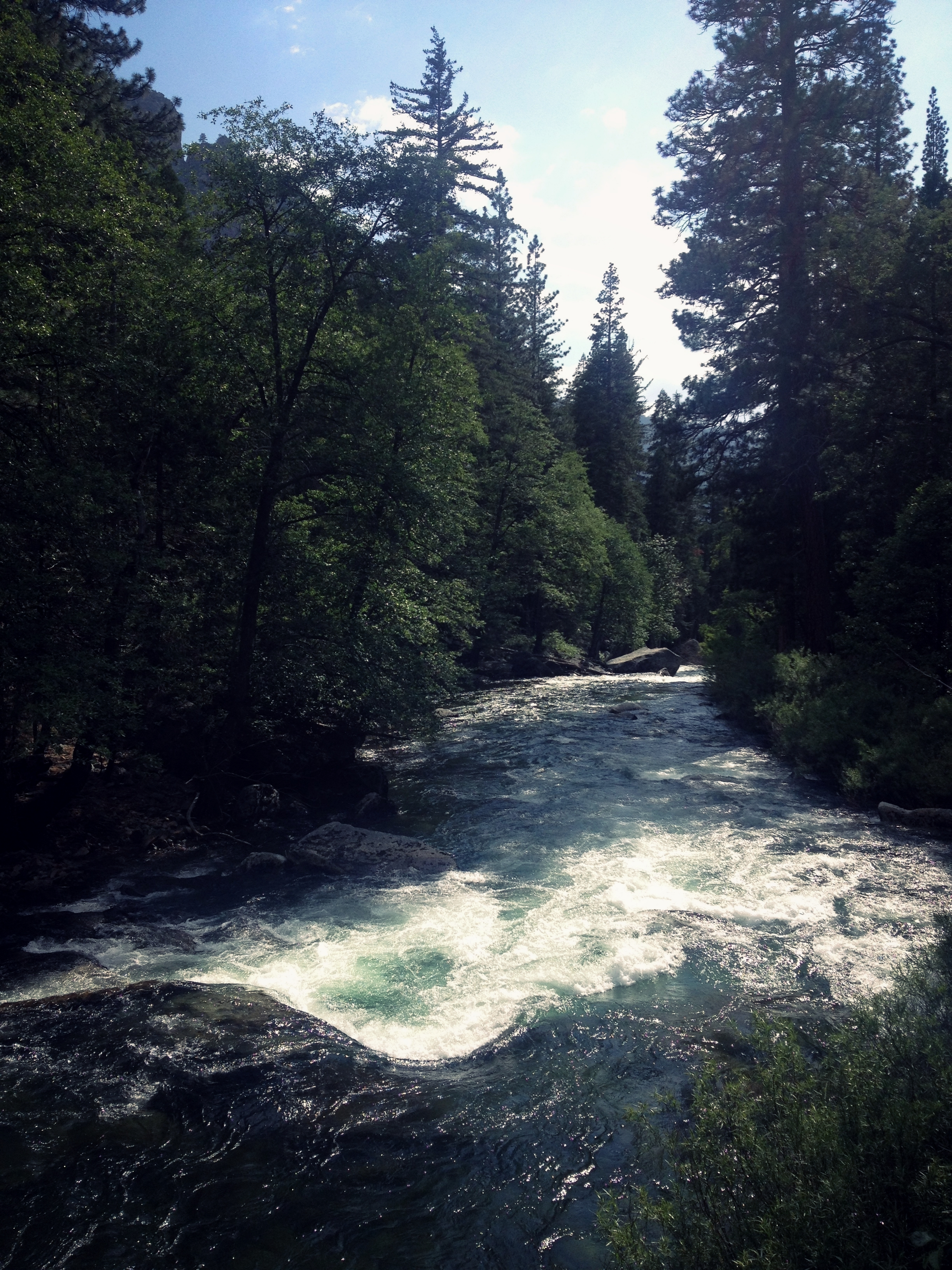 Mountain River in Kings Canyon California