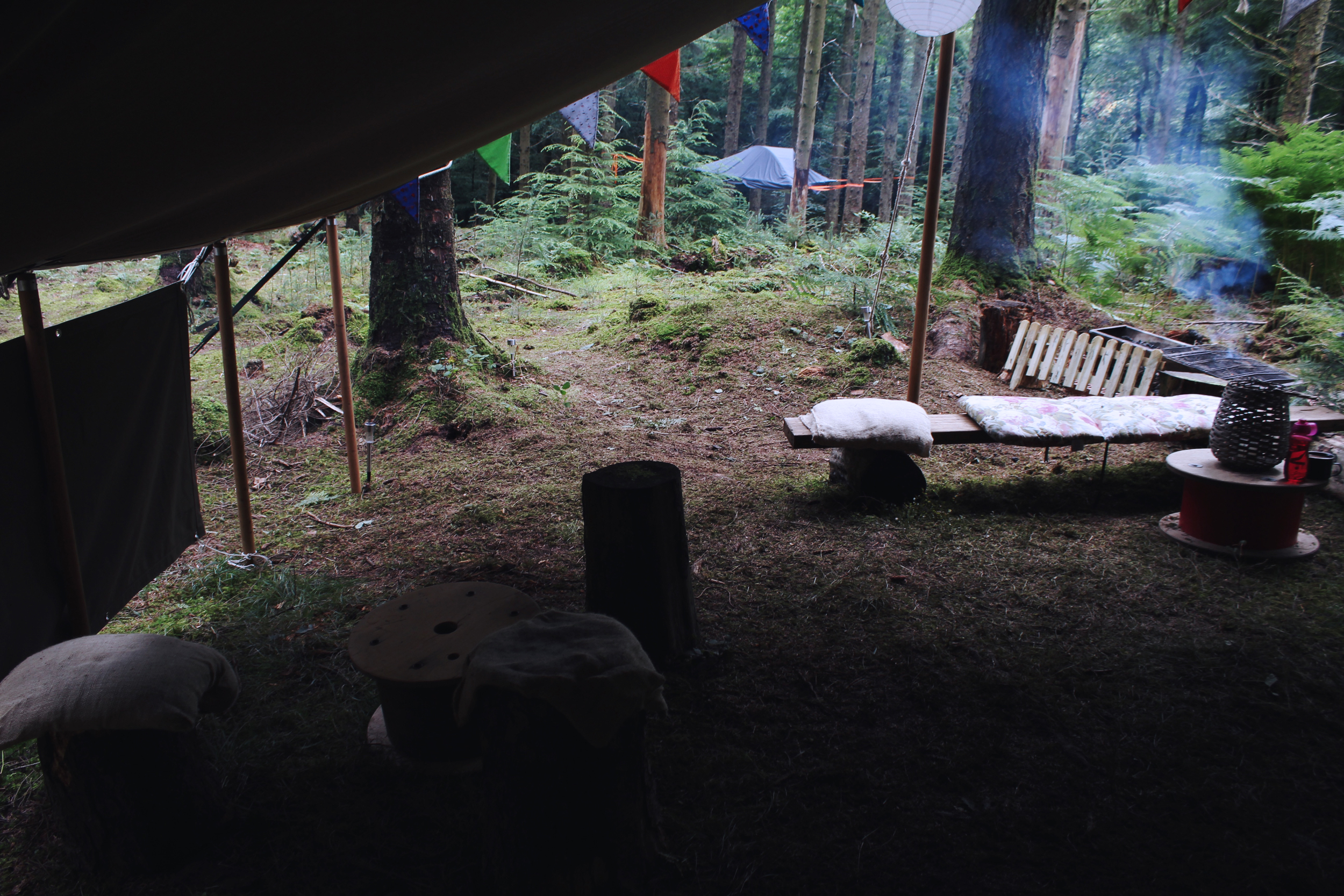 Treetop Camping in Haldon Forest