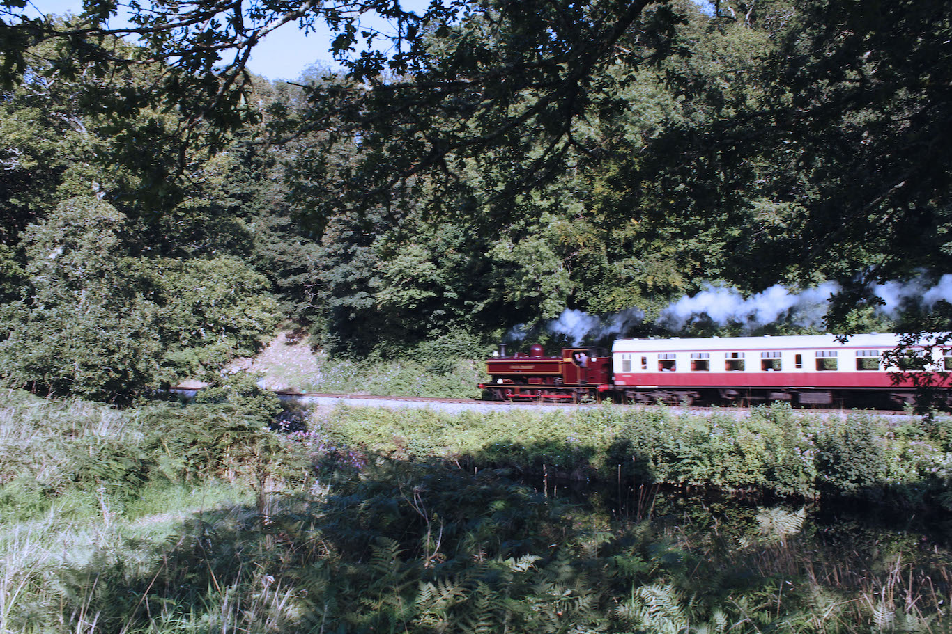 Steam Railway along the River Dart, Totnes to Staverton
