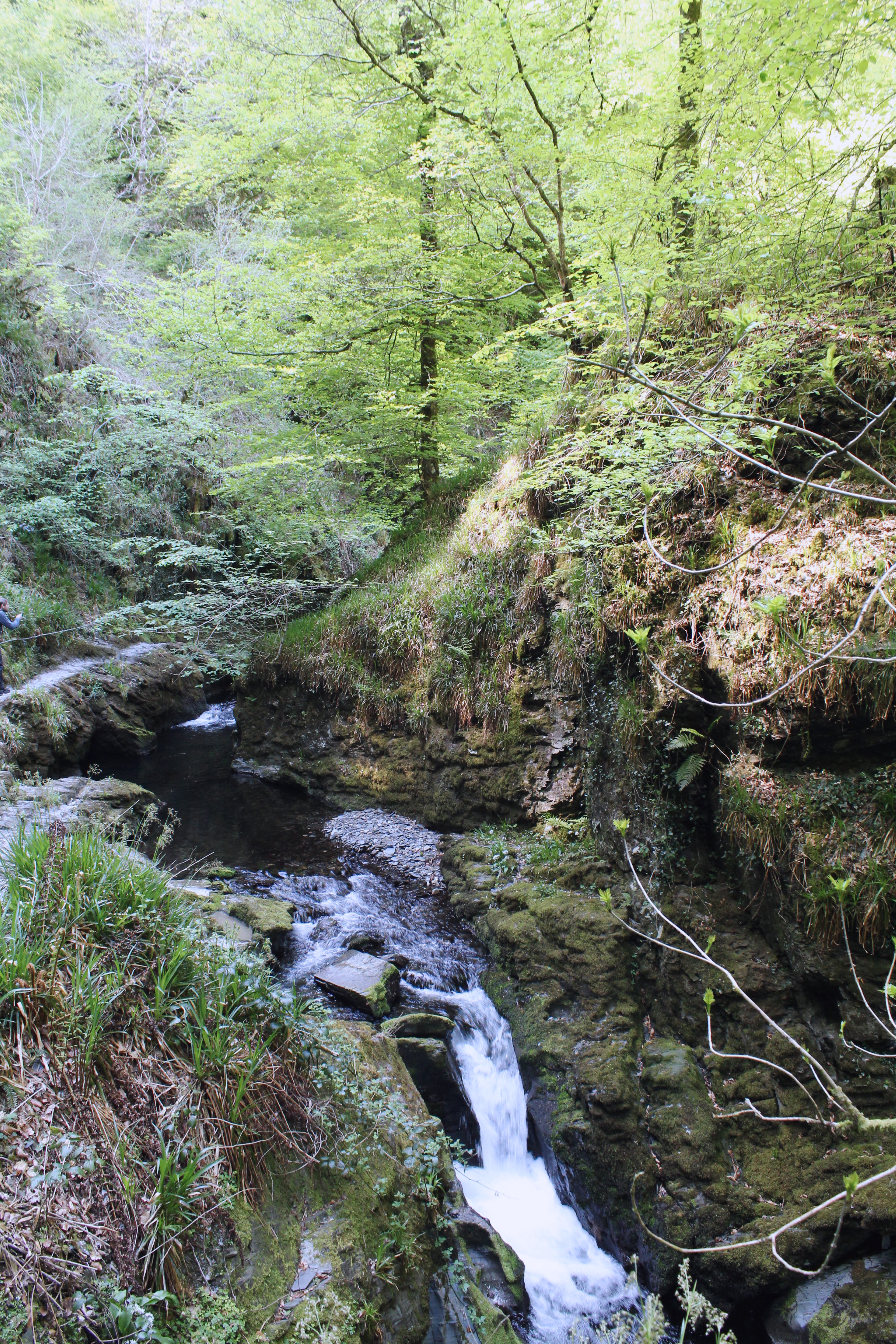 Waterfall at Lydford Gorge in the summer