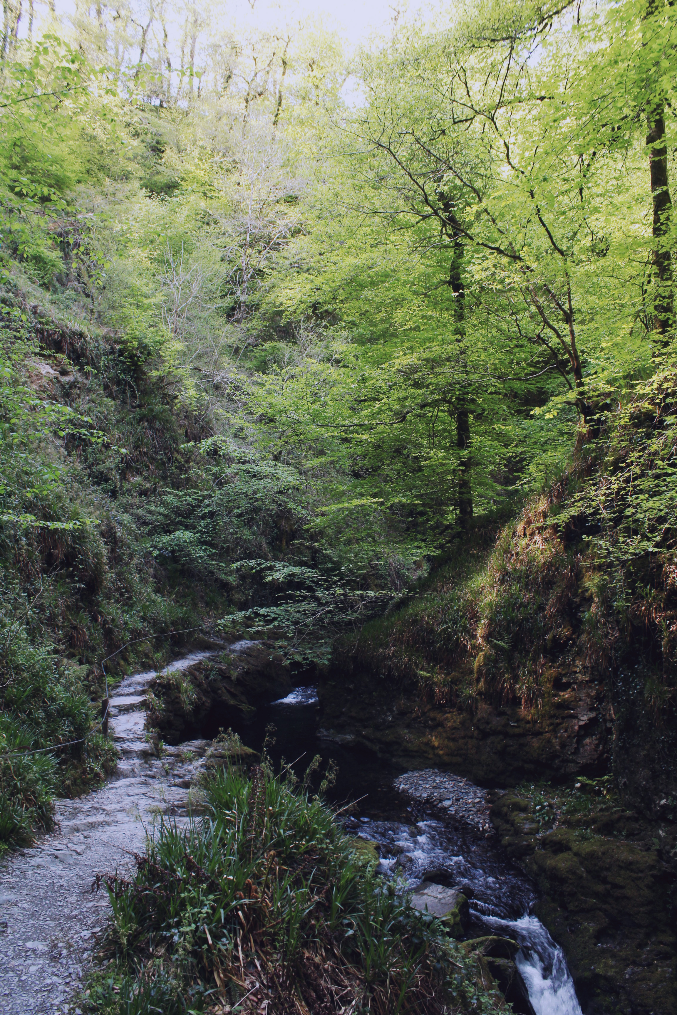 The path and waterfall at Lydford Gorge in the early summer time