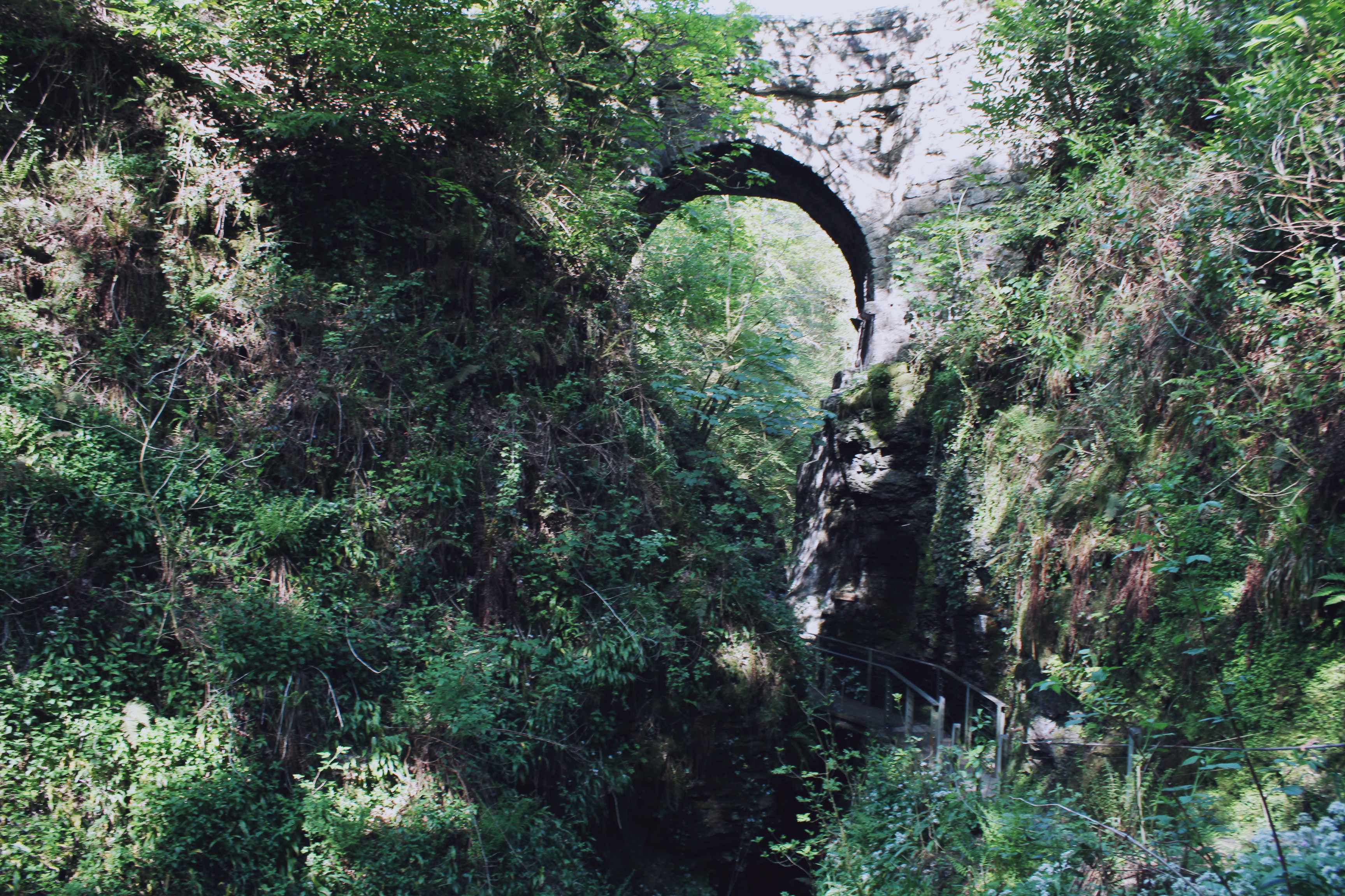 A bridge over Lydford Gorge in the summer
