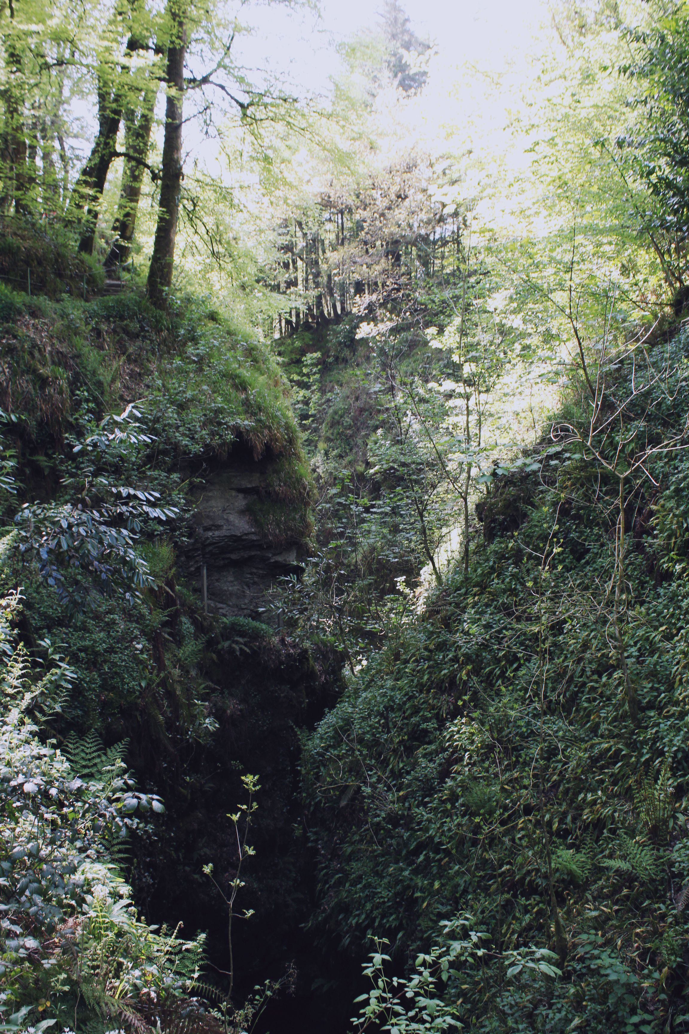 The beautiful Lydford Gorge, Devon