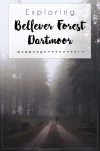 Bellever Forest Pinterest