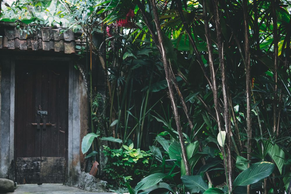 Wooden Doorways, Ubud