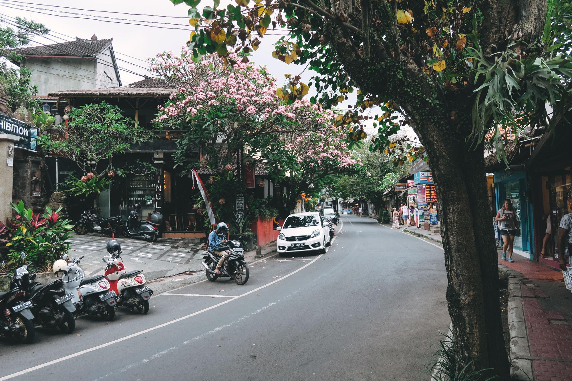 Pink Blossom, Ubud, Bali
