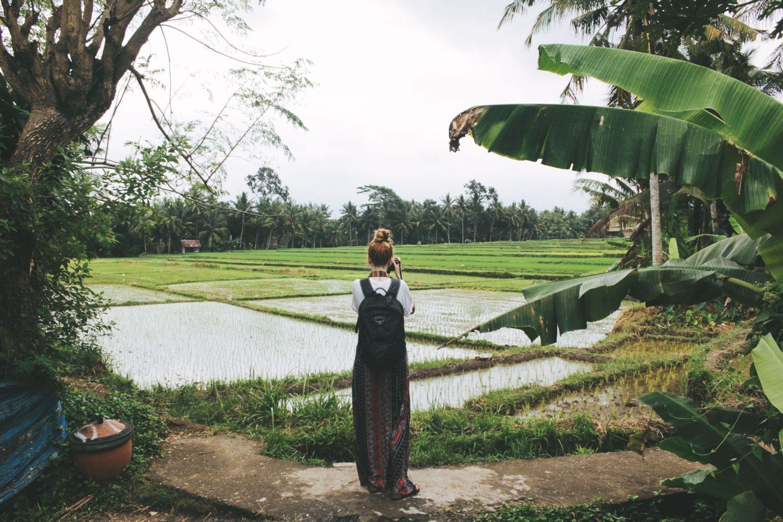 Ubud Palace & Rice Fields