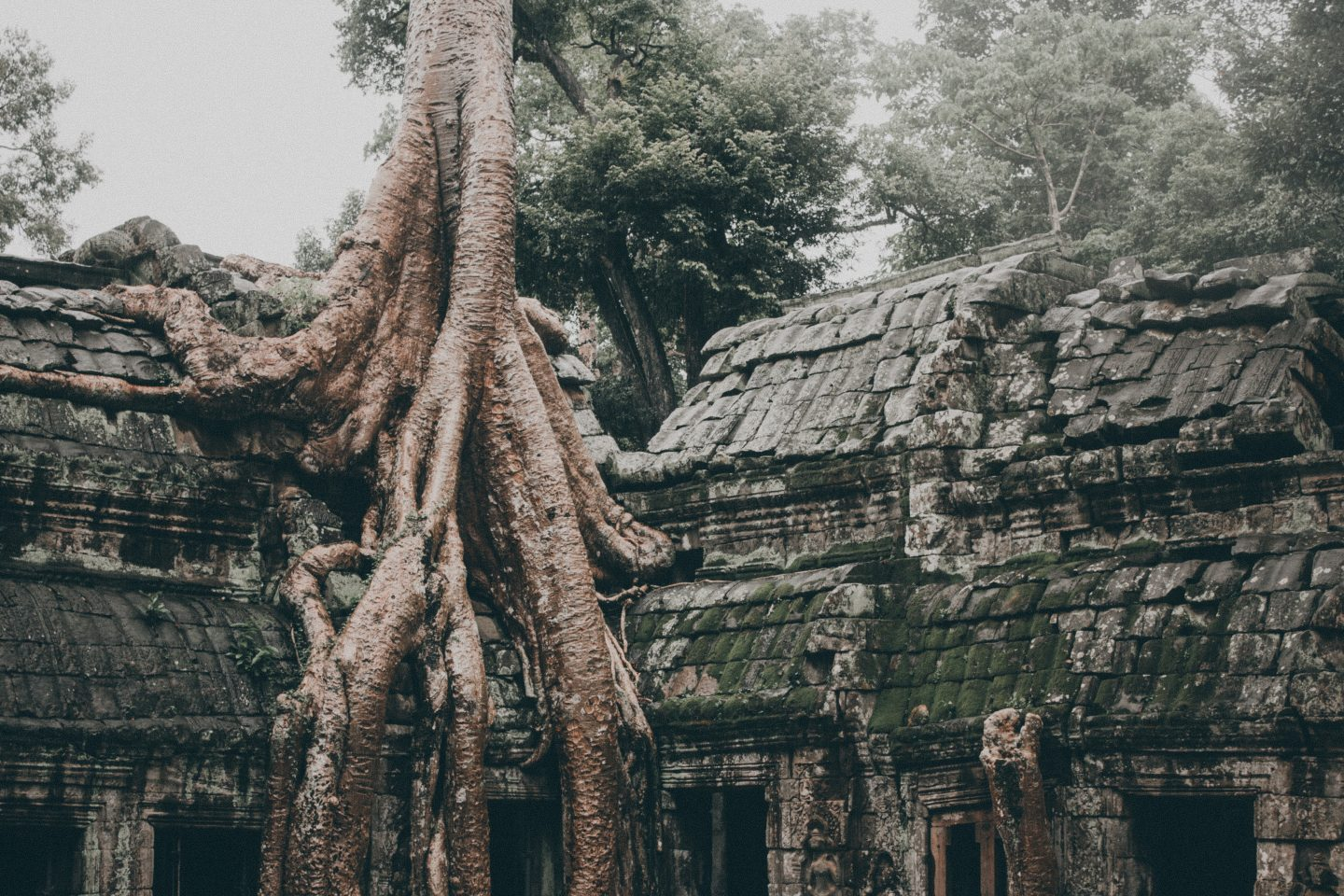 The Temples of Angkor Wat, Cambodia