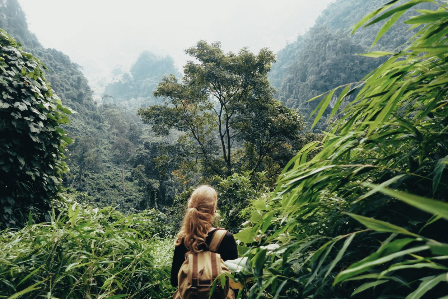 Wild Camping in Pygmy Cave, Vietnam   Part I